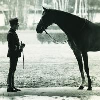 The Cadre noir in Saumur